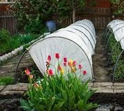 Парники для сада и огорода